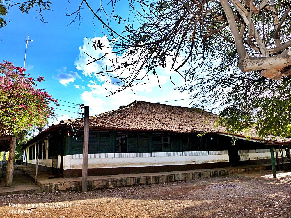 Super Campo Maior luselenedecampomaior hotmail.com  Fazenda ... 126a1912cc56d