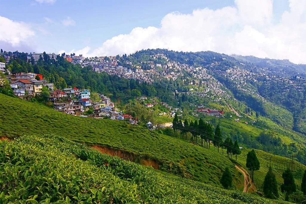 दार्जिलिंग, पश्चिम बंगाल (Darjeeling, West Bengal)