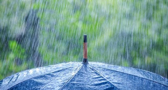 ما هي فوائد المطر