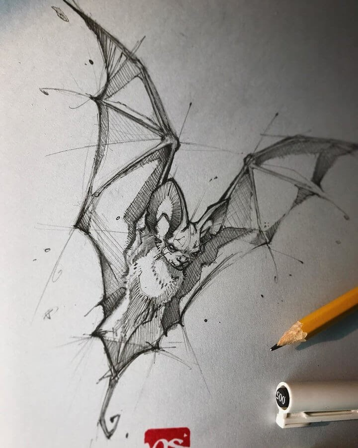 03-Bat-Psdelux-Fineliner-Ink-and-Pencil-Animal-Drawings-www-designstack-co