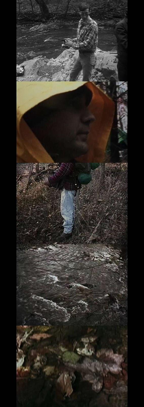 El proyecto de la bruja de Blair (1999) HD 1080p Latino