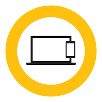 Norton Security Standard Icon