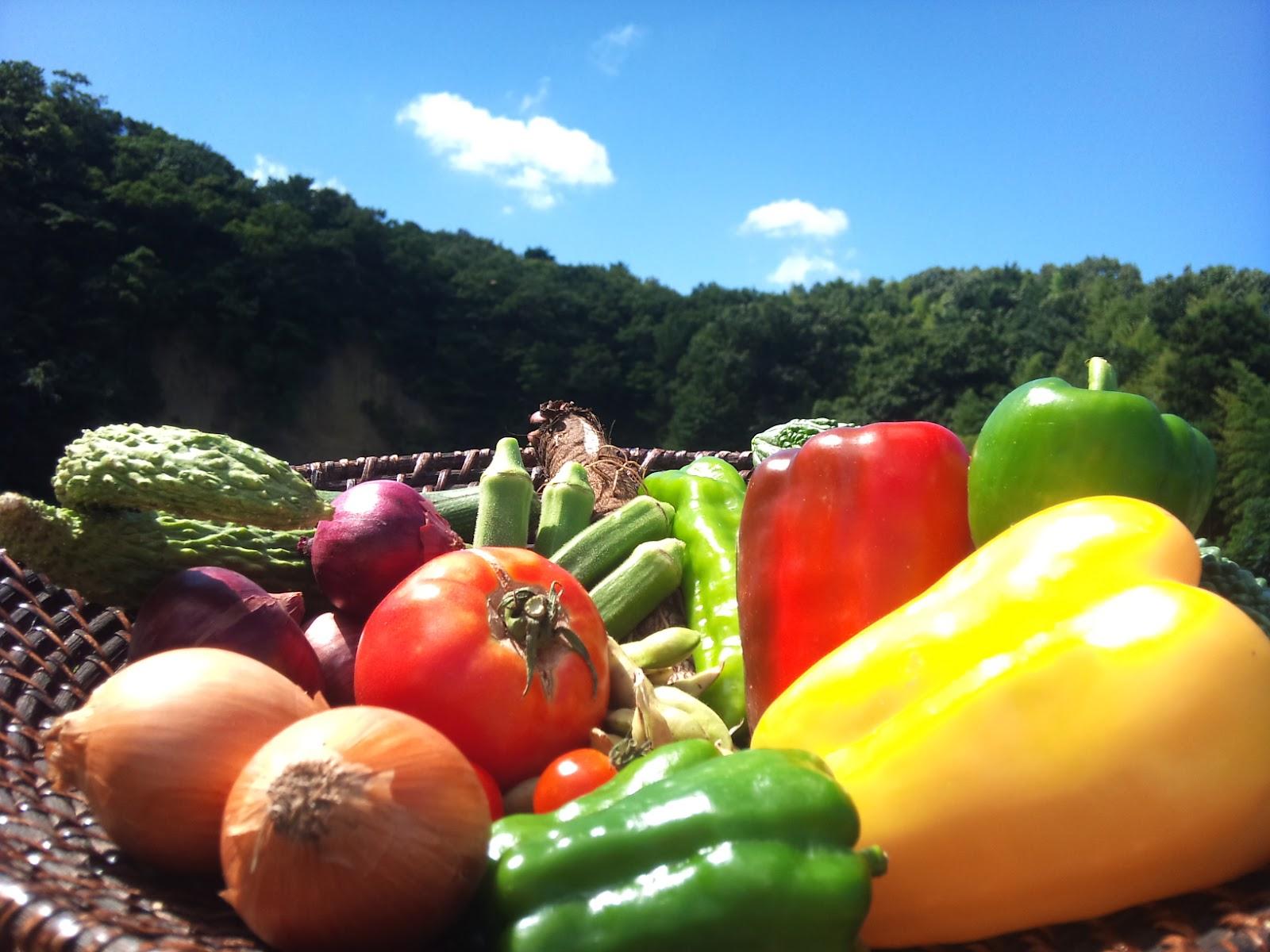 NAVER まとめ梅雨時期のカラダ集中ケア!6月の旬野菜レシピ