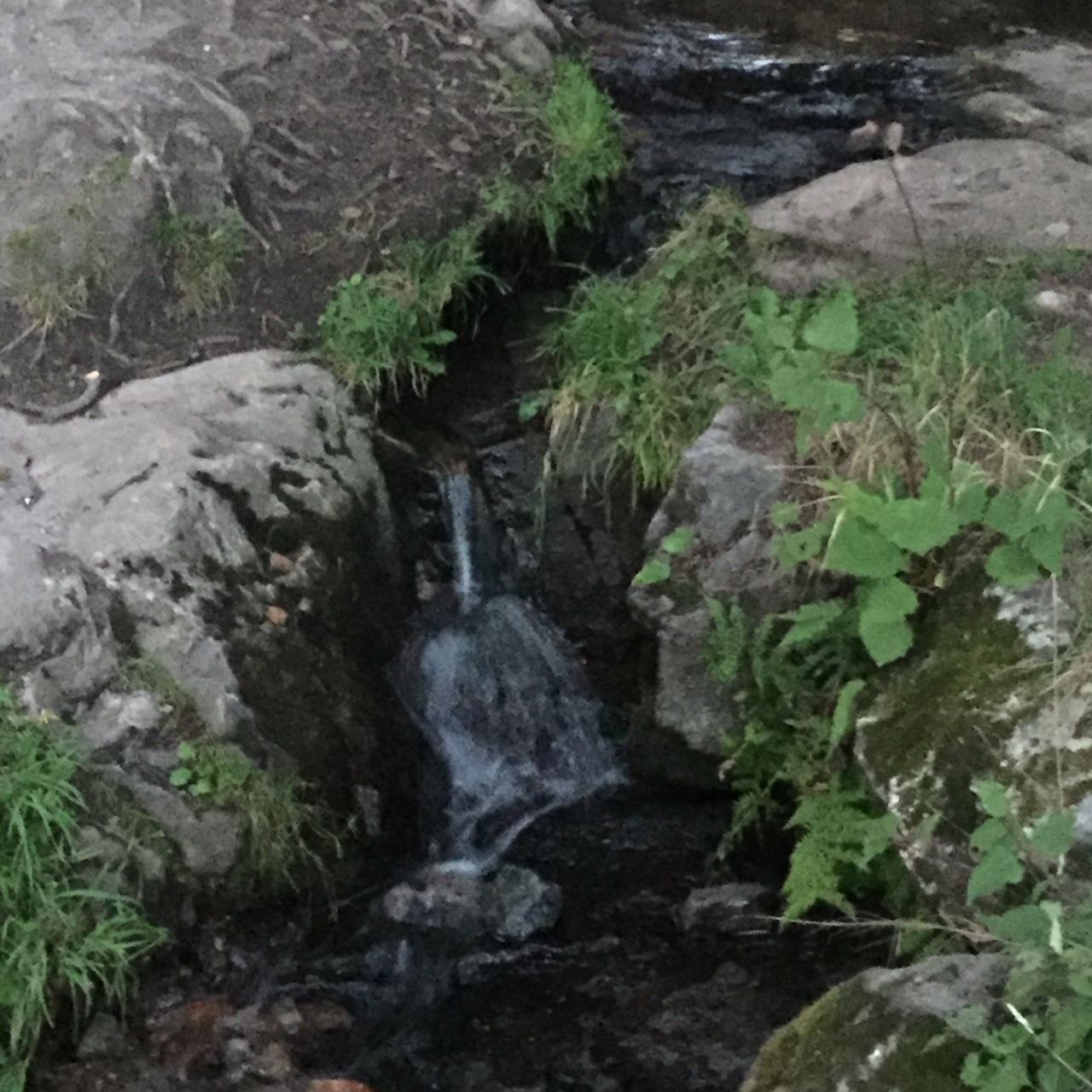 Kuka on purot vuodelta todellinen koti äidit