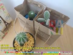 Souvenir Kaktus Mini Tanaman Hias Unik Dan Cantik Paper Bag