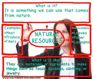 Social Studies Content Concept Web