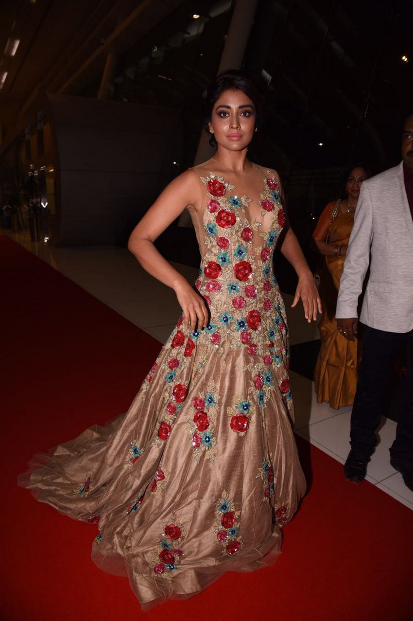 Shriya Saran Spicy Stills at SIIMA Awards 2017