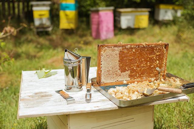 Προς νέους μελισσοκόμους: Προϋποθέσεις για να γίνει κάποιος μελισσοκόμος