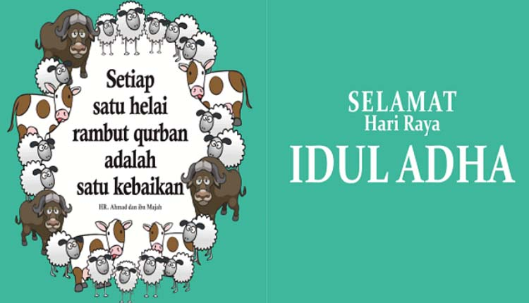 Kata Mutiara Tentang Qurban Cikimm Com