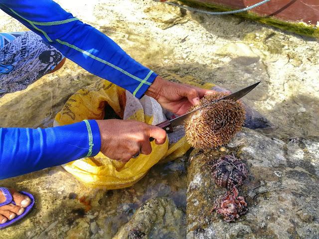 tagbak marine sanctuary liloan southern leyte
