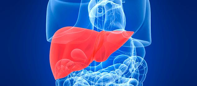 síntomas que alertan de un hígado intoxicado