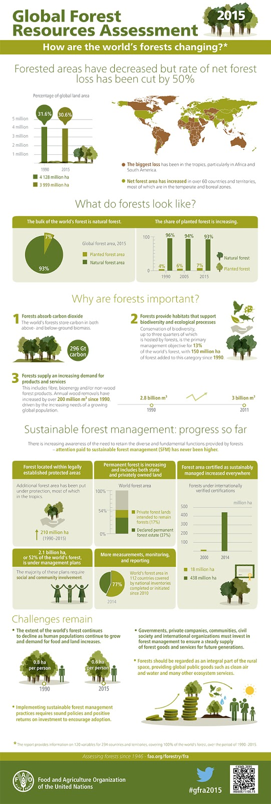 How are the world's forests changing?