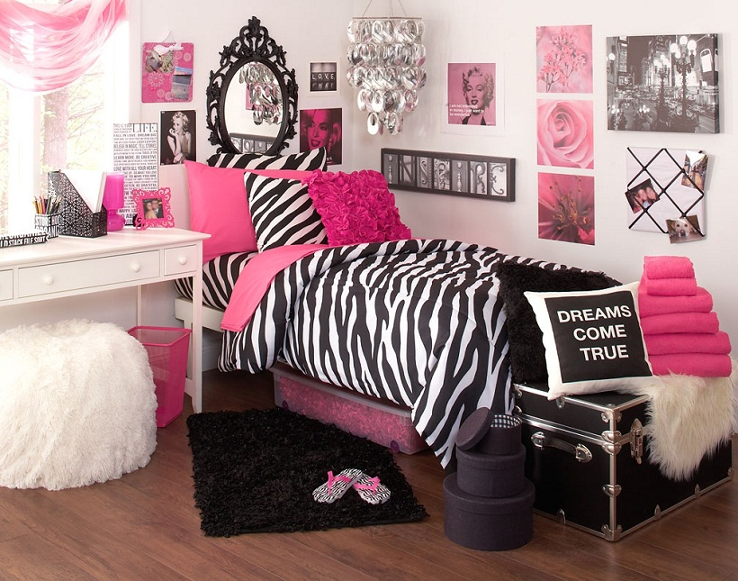 cute zebra room ideas with mirror