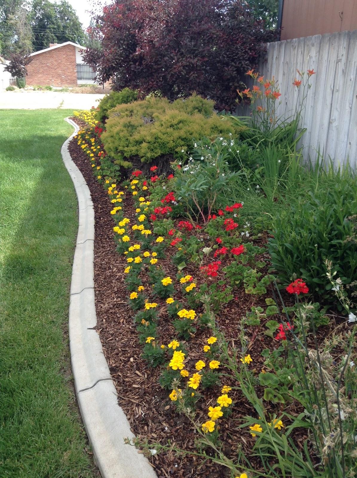 happy clean living beautiful flower gardens 2016