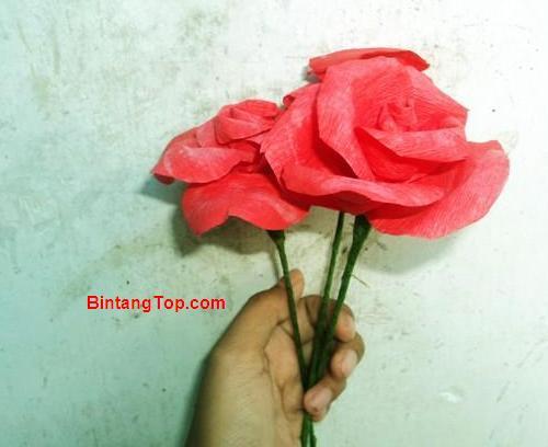 cara membuat bunga mawar kertas crepe