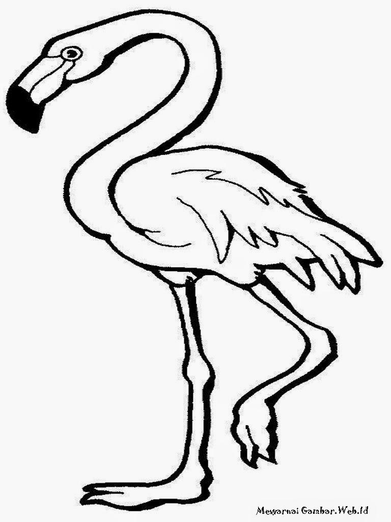 Gambar Mewarnai Burung Garuda