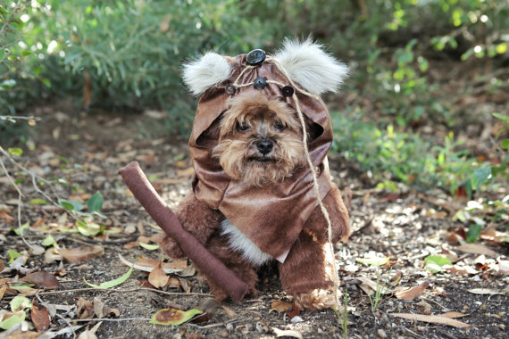 15 coolest dog costumes. Black Bedroom Furniture Sets. Home Design Ideas