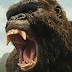 A Ilha da Caveira eleva Kong a status de força e rei da natureza