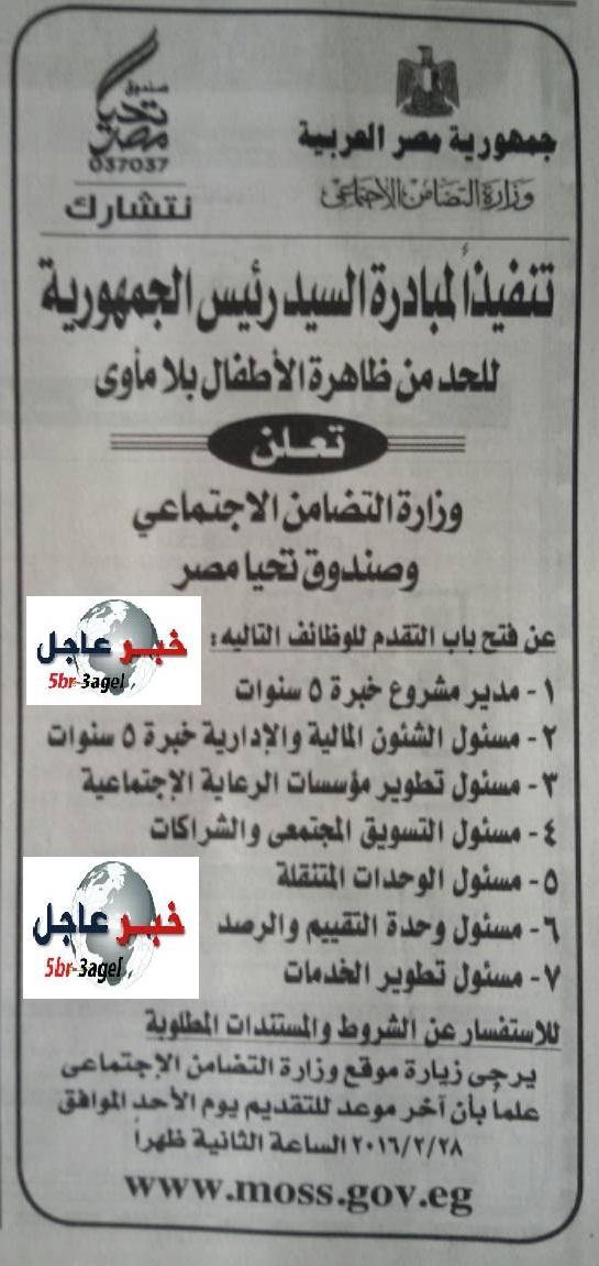 وظائف وزارة التضامن الاجتماعى وتحيا مصر منشور بالاهرام اليوم والتقديم حتى 28 / 2 / 2016