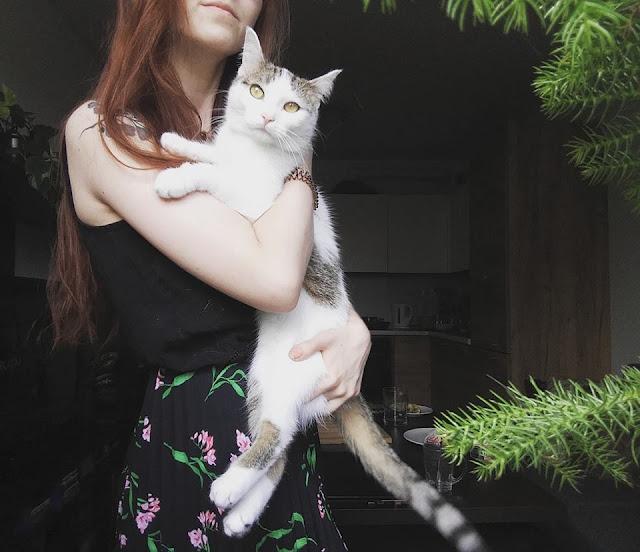 Dlaczego nie wypuszczam kota na dwór - kilka refleksji na temat kociej wolności