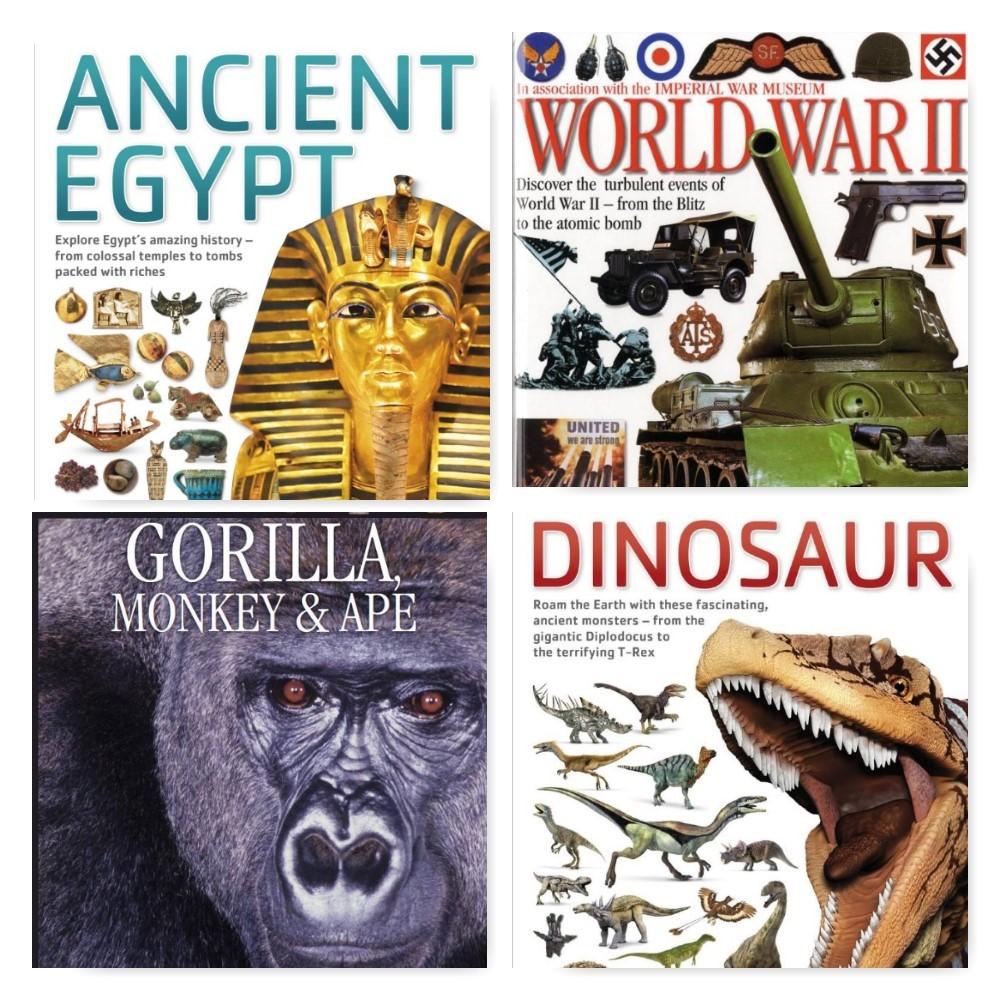 DK Eyewitness Books: Earth