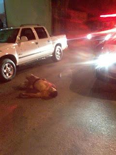 Nova-florestense é assassinado com vários tiros em Cristalina, no estado do Goiás