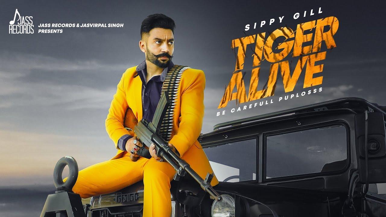 Tiger Alive Song Lyrics -  Sippy Gill - Punjabi Song 2019