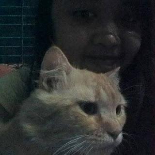 Bersama Garfield, Kucing kesayanganku