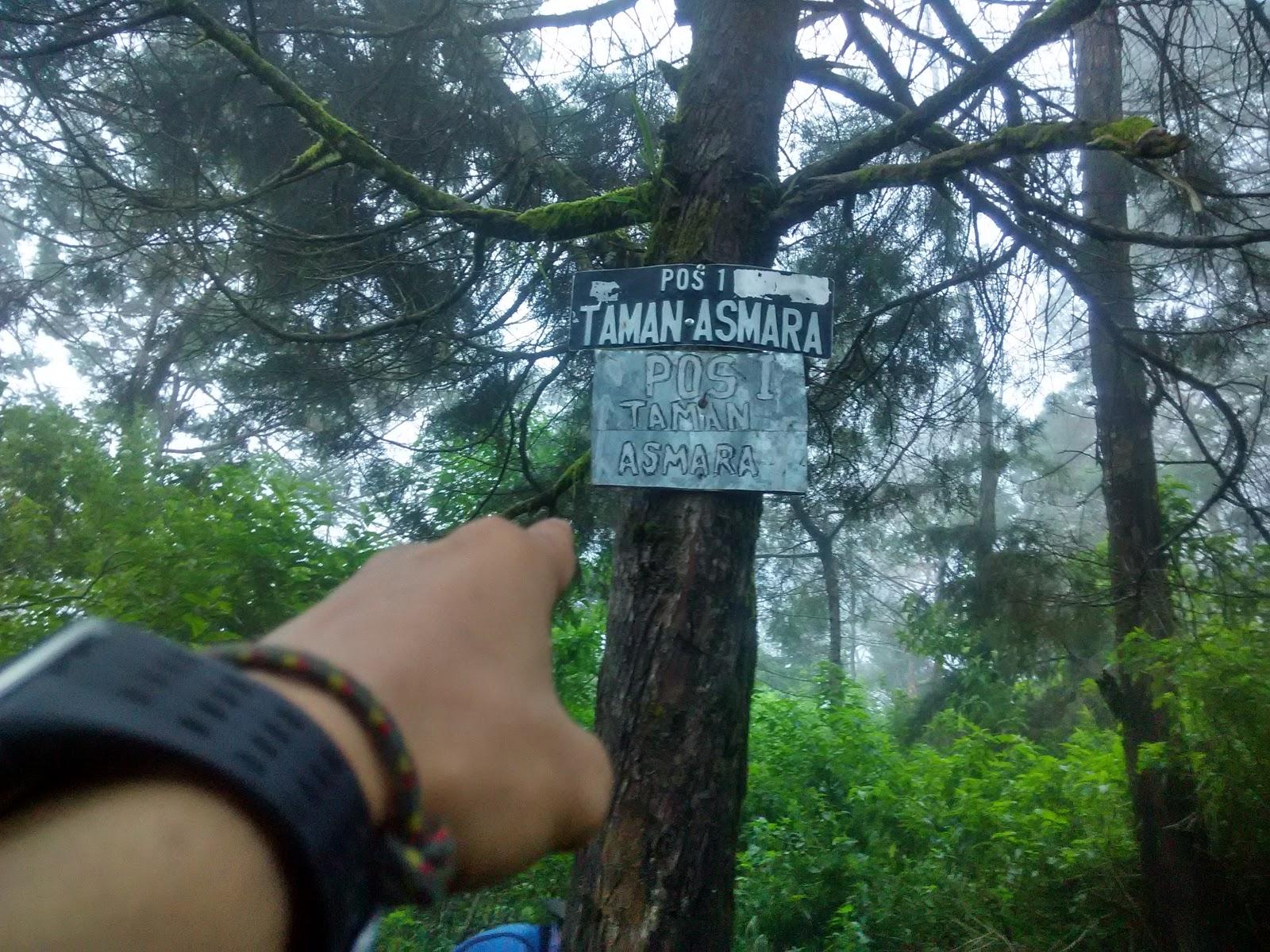 Taman asmara bowongso