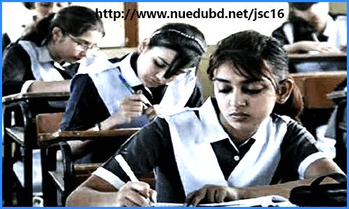 Mass Education - Essay