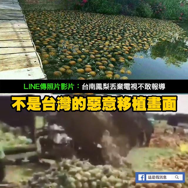 鳳梨 照片 影片 台南 謠言 丟棄
