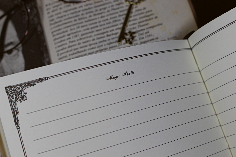 blogger bullet planner diário do vintage blogueira de beleza