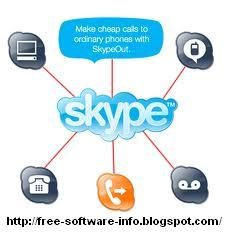 How to download and install skype dummies.