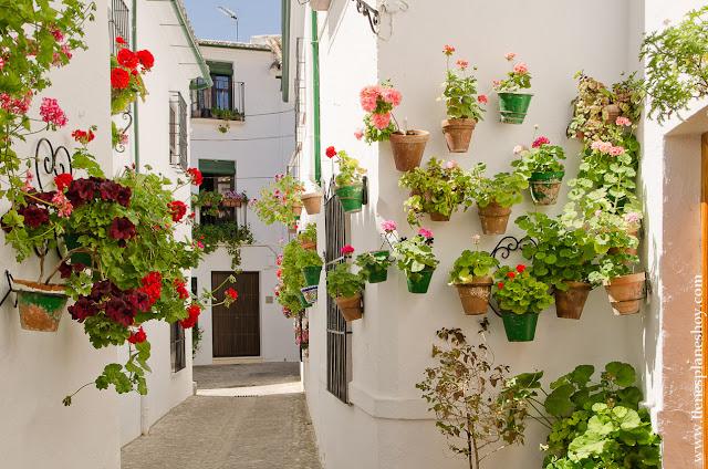 Visitar Priego de Córdoba pueblo flores encanto