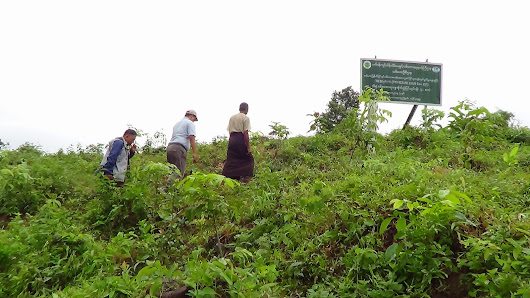 Field Visit to ITTO REDD+ Project Site in Yedashe Township, Taungoo District