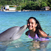 Roatán, paraíso del Caribe