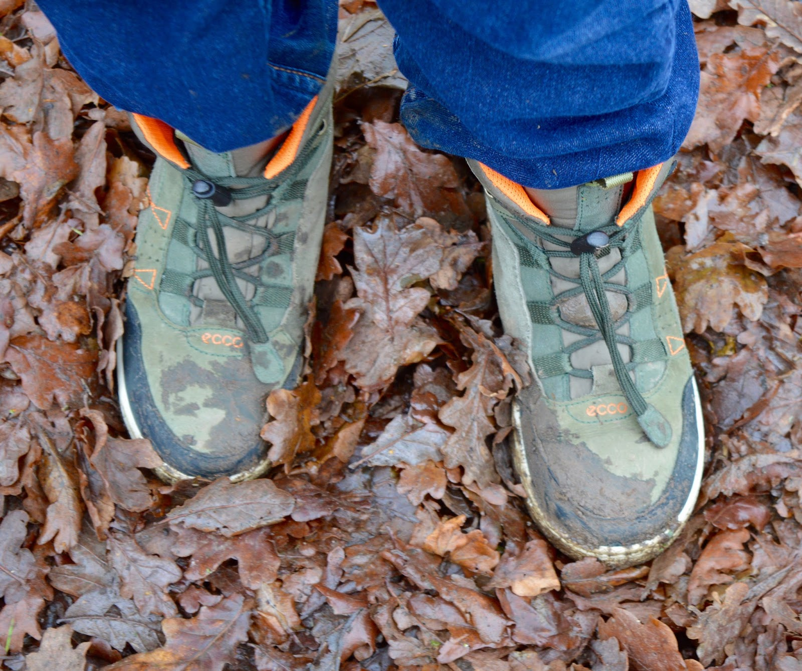Our Visit to Plessey Woods - A FREE day out in Northumberland. It was very muddy and the perfect chance for Harry to put his GORE-TEX shoes through their paces - GORE-TEX ecco shoes