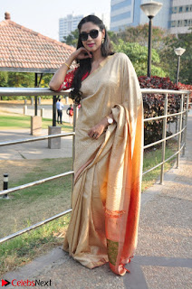 Angana Roy in Silk Saree at Teaching Tree Carnival .xyz 028.JPG
