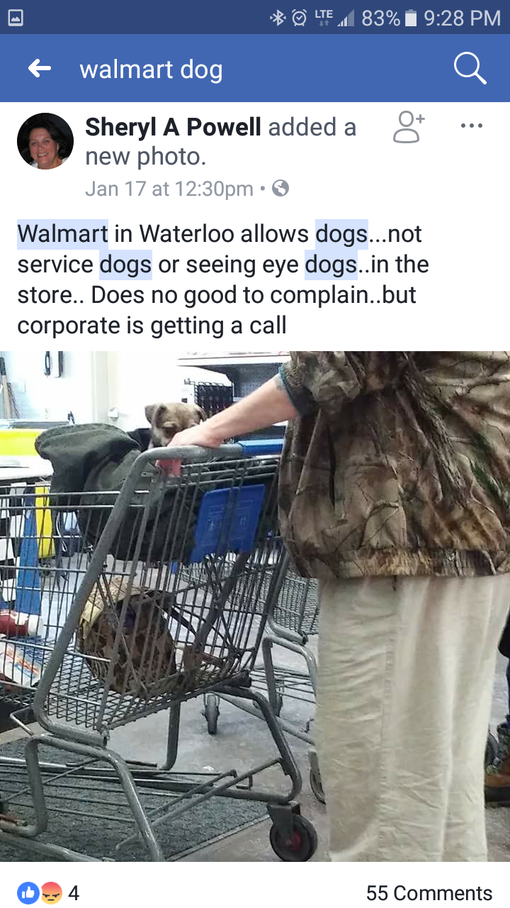 The fake service dogs of walmart the service dog free press some of the strangest people can be found at any walmart during the day or night so can strange fake service dogs 1betcityfo Images