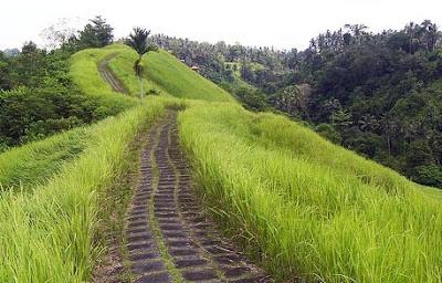 Bukit Cinta CampuhanBali Jalur Trekking ubud-7+ Tempat Wisata Menarik di Bali yang Wajib Dikunjungi