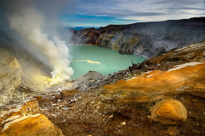 Brewing up Earth's earliest life