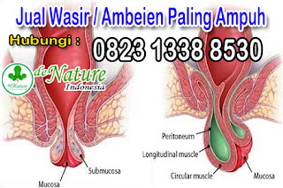 daftar-merk-obat-ambeien-wasir-tanpa-efek-samping-untuk-ibu-hamil