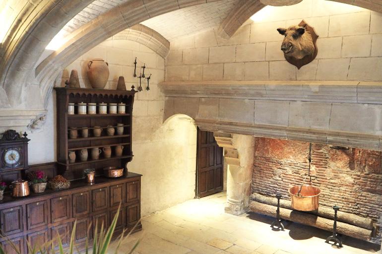 Visite des ch teaux de la loire 2 louise grenadine for Chateau chenonceau interieur