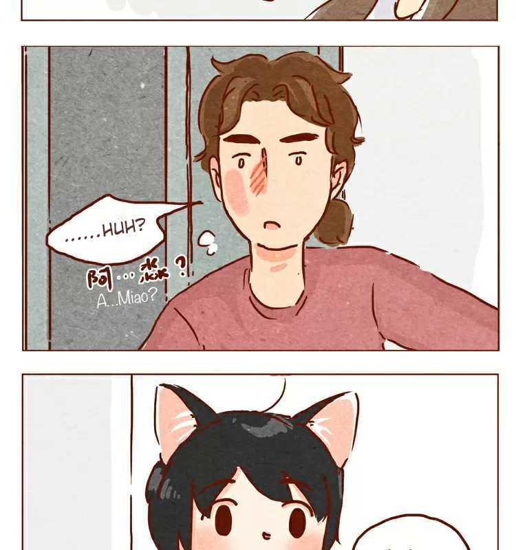 Hey, Your Cat Ears are Showing!