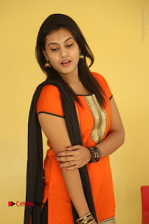 Telugu Actress Chandana Stills in Salwar Kameez at Karam Dosa Movie Press Meet  0035.JPG