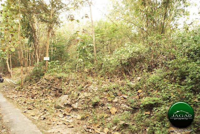 Tanah Pekarangan dekat STIE Hamfara