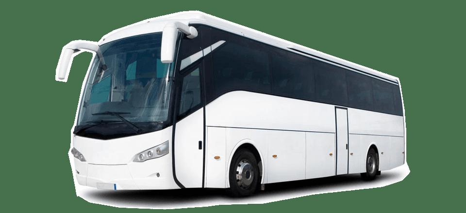 Rental dan Sewa Bus Pariwisata Banyuwangi Jember Surabaya