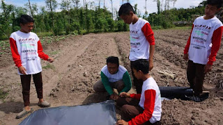 Smk-agribisnis-lombok