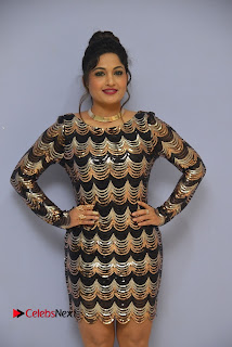 Actress Madhavi Latha Pictures in Short Dress at On Mona Birthday Premiere 0027