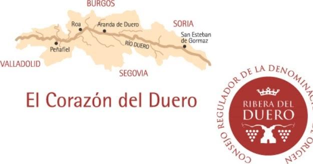 """I vini spagnoli della """"ribera del duero"""": ottimi vini da una delle migliori zone vitivinicole del mondo."""